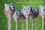 Owl Cake Pops! 005 copy