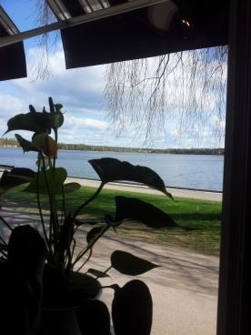 La vista dal ristorante buffet. A un certo punto ha iniziato a nevicare, e io credevo fossero i pollini!