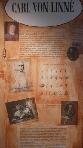 Museo archeologico di Lund